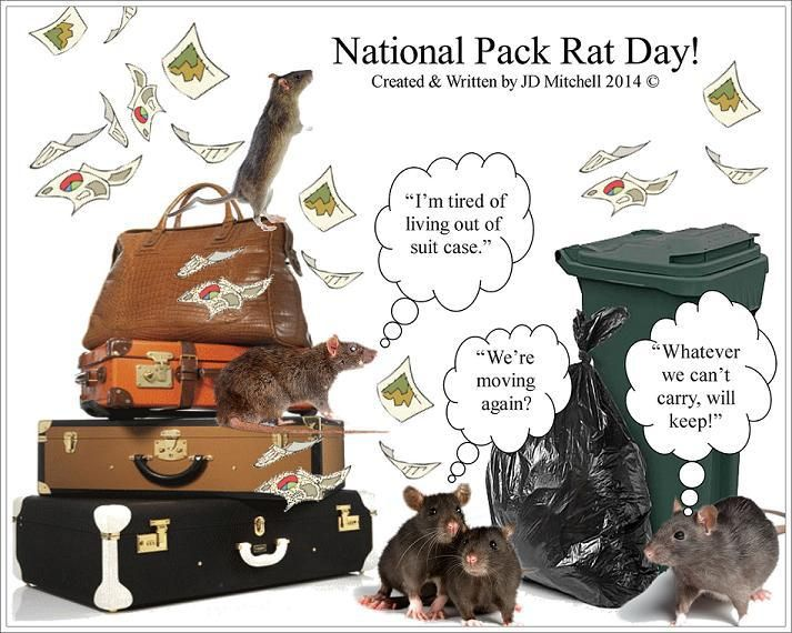 May 17th National Pack Rat Day – Unboxing the Bizarre™