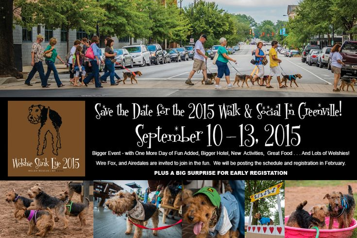 2015 Stink Eye Walk & Social to Benefit Welsh Terrier Rescue (WTCARES.org) Tickets, Greenville | Eventbrite