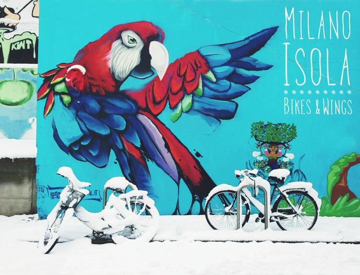 Bikes ❄ Wings #lamiacittà