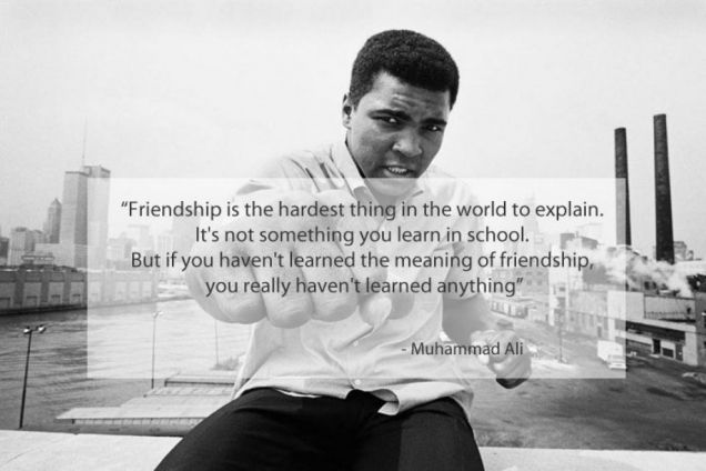 Funlyest - 15 Famous Quotes About Friendship (15 Photos)
