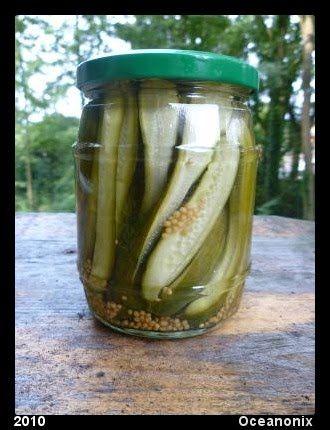 De moestuin en recepten van Nonix: Komkommer of augurk zoet/zuur