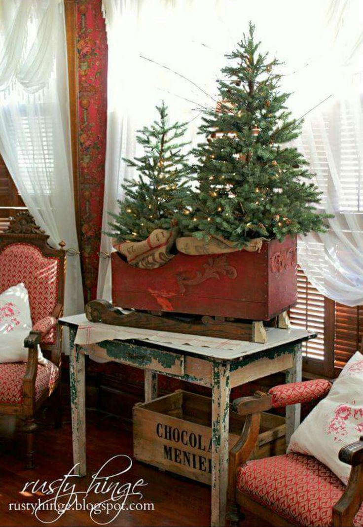 Mini Christmas trees in a red crate