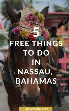 5 Free Things To Do In Nassau, Bahamas   The Bahamas