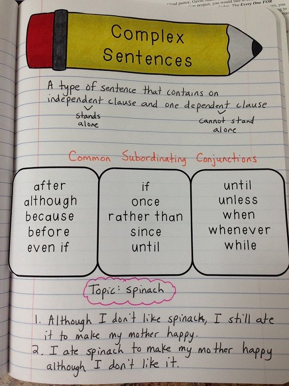 {FREEBIE!} Interactive Notes: Simple, Compound, and Complex Sentences