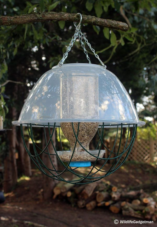 I;ll show you how to convert an Innocent Juice bottle into a fantastic bird feeder!   Time Needed: 1 Hour Why Do It?: Providing food for garden birds