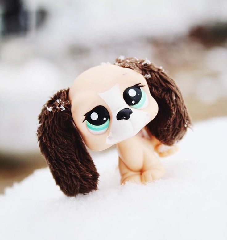 Littlest pet shop picture (c) harmonypaws