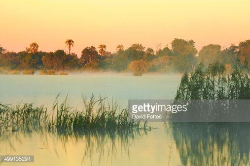 Stock Photo : Dawn over Zambezi River, Zambia