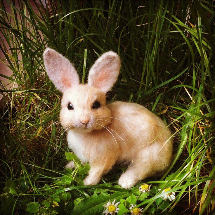 Needle felted animal, rabbit, cute miniature, wool #needlefelted #miniatureanimalfigurines #toytoys #handmade #natural #fiberast #cute #realisticanimal #homedecor #birthdaygift #giftideas #merinowool #animalsculpture #miniaturegift #naturalwool #handmadeanimal #feltdoll #happyanimals #blackfridayetsy #naturalwooltoys #collectable #christmas #ecofrendly #waldorf #creative #ecotoys #feltcrafts #imaginative #childrenkids #giftforanimallovers  #giftforcraftlovers #woolanimal #funny