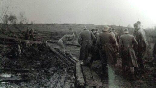 Germans in the war