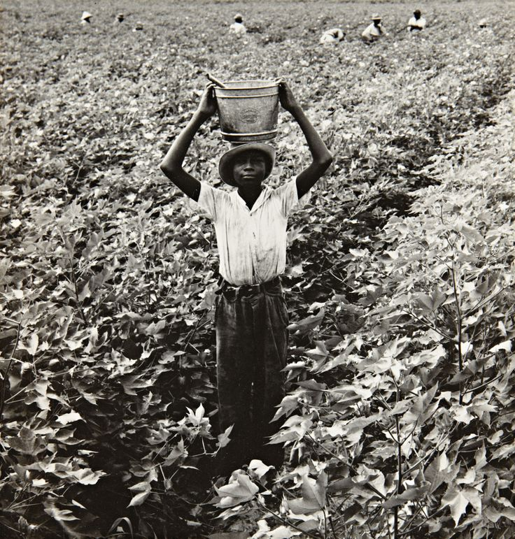 DOROTHEA LANGE | Water Boy, Mississippi Delta, 1938 | Gelatin silver print, printed 1960s, flush-mounted Sold for $27,500 at The Face of Modernism: A Private West Coast Collection, 4 April 2012, New York. As with the work of Ben Shahn, Dorothea Lange...