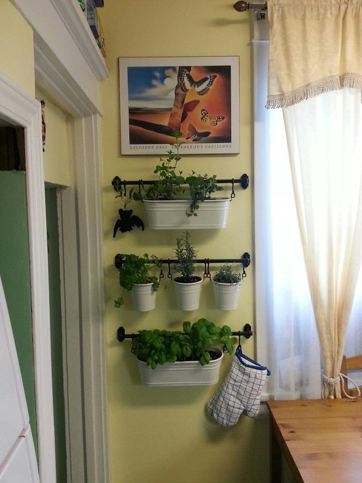 Kitchen herb garden contemporary house ideas pinterest for Kitchen herb garden
