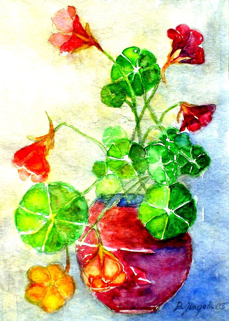 """Indian cress"" Original watercolor painting by Britta Bergström-Jungell."