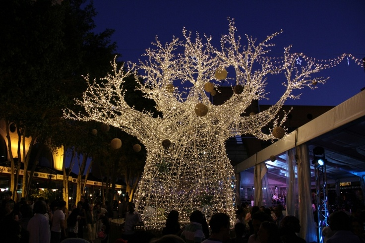 """Each December, thousands of people of different races, cultures and languages gather around lights shaped into a traditional African baobab tree in Mandela Square in Johannesburg, South Africa, celebrating the season with carols and the Johannesburg Festival Orchestra and Symphony Choir of Johannesburg."" - MCC"