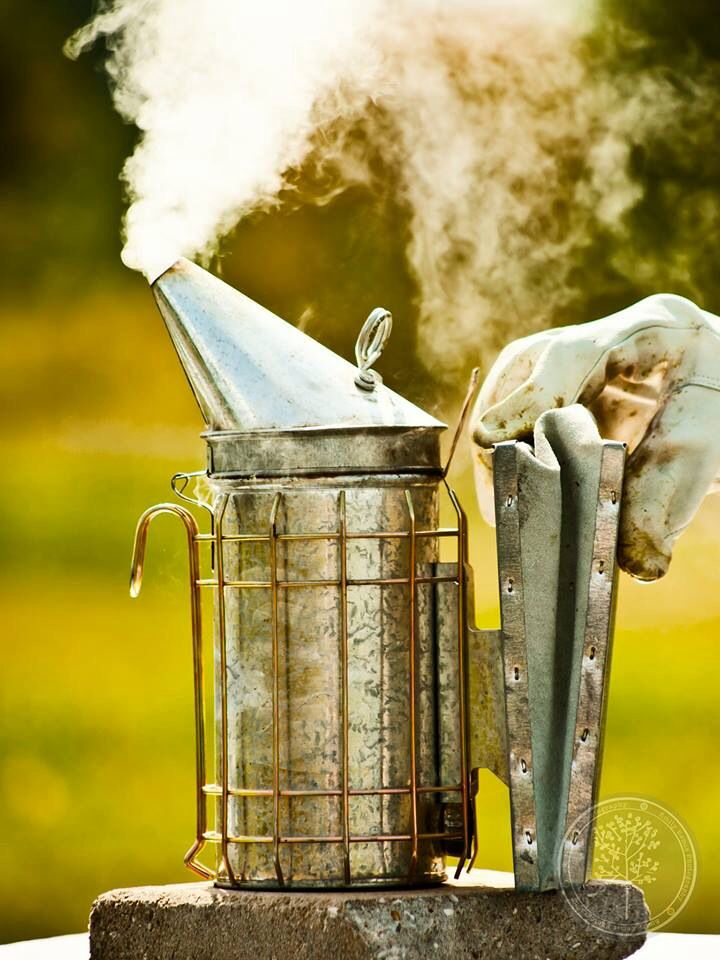 The 25+ best ideas about Bee Smoker on Pinterest ...