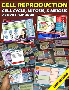 Over 60 pages of engaging activity filled cards are included in this flip book. I have dissected the cell cycle, mitosis, and meiosis in a way where it is visual and manipulative. This activity flip book allows each step of these three significant features of cellular division to be learned in many different ways. Each step given is clear and gives easy to read examples. There is an assessment flip book game at the end as well as graphic organizers throughout.