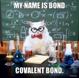 MY NAME IS BOND, COVALENT BOND.   Science / Chemistry Cat   Troll Meme Generator