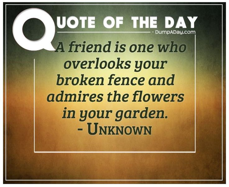 a-friend-is-one-who-overlooks-your-broken-fence-and-admires-the-flowers-in-your-garden