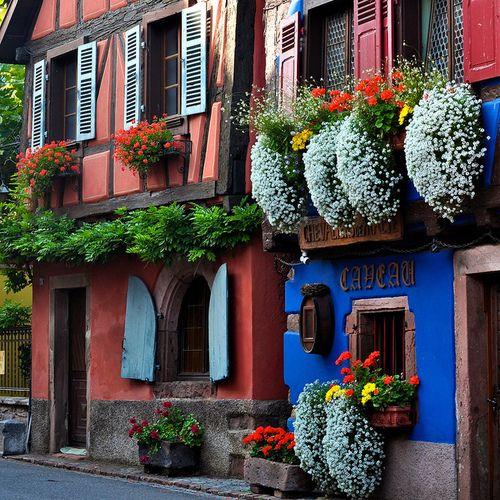 Abriendo Puertas y Ventanas...thehappinessofliving    Niedermorschwihr, c'est beau en toutes saisons! Niedermorschwihr is beautiful in any season