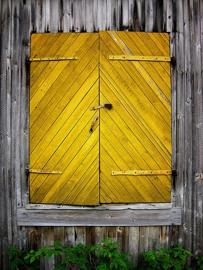 This barn door. | 33 Reasons Mustard Yellow Is The Very Best Color :: http://www.buzzfeed.com/alannaokun/reasons-mustard-yellow-is-the-very-best-color?bfpi