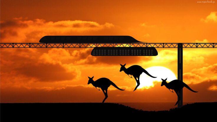 SkyWay в Австралии Работа по выведению SkyWay на рынок не ограничивается строительством тестовых участков и сертификацией систем SkyWay, но предполагает широкий спектр активности, направленной на формирование спроса на предлагаемые решения, а также стратегии и тактики их внедрения. Существенную роль в этой связи играет выставочная деятельность, география которой должна быть максимально расширена. Берлин и Минск стали …