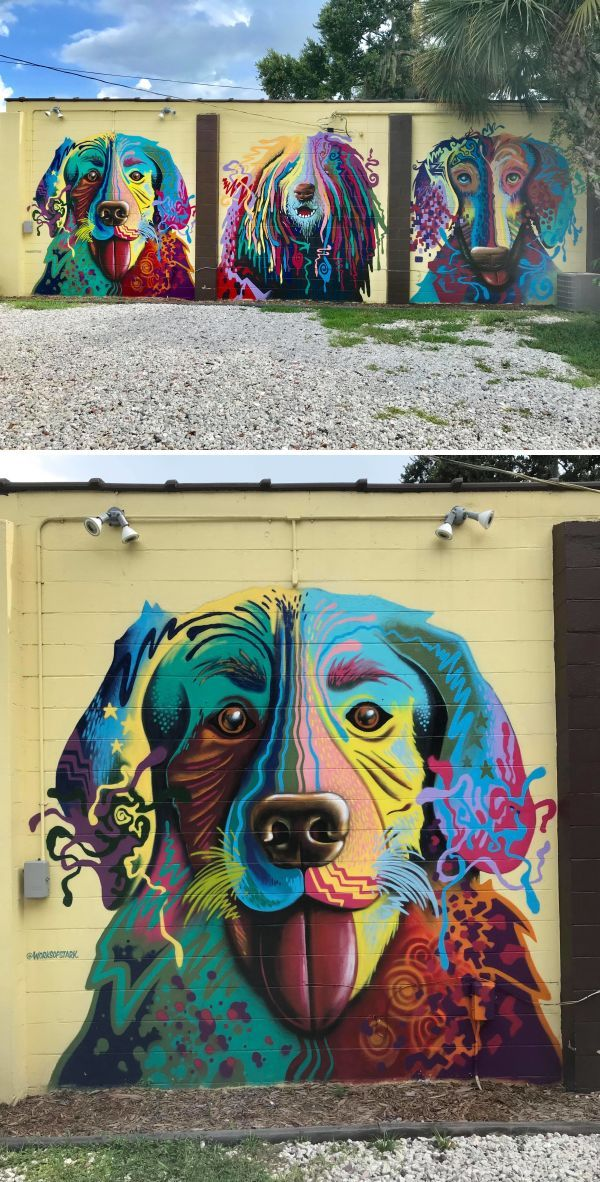 The Abstract Dogs Of Oviedo Florida By Works Of Stark Murals And