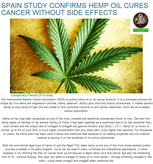 20 Medical Studies That Show Cannabis Can Be A Potential ...