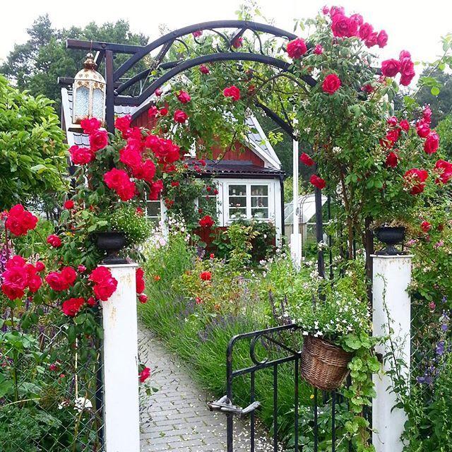 Oltre 25 fantastiche idee su cottage di campagna su for Planimetrie di cottage francesi