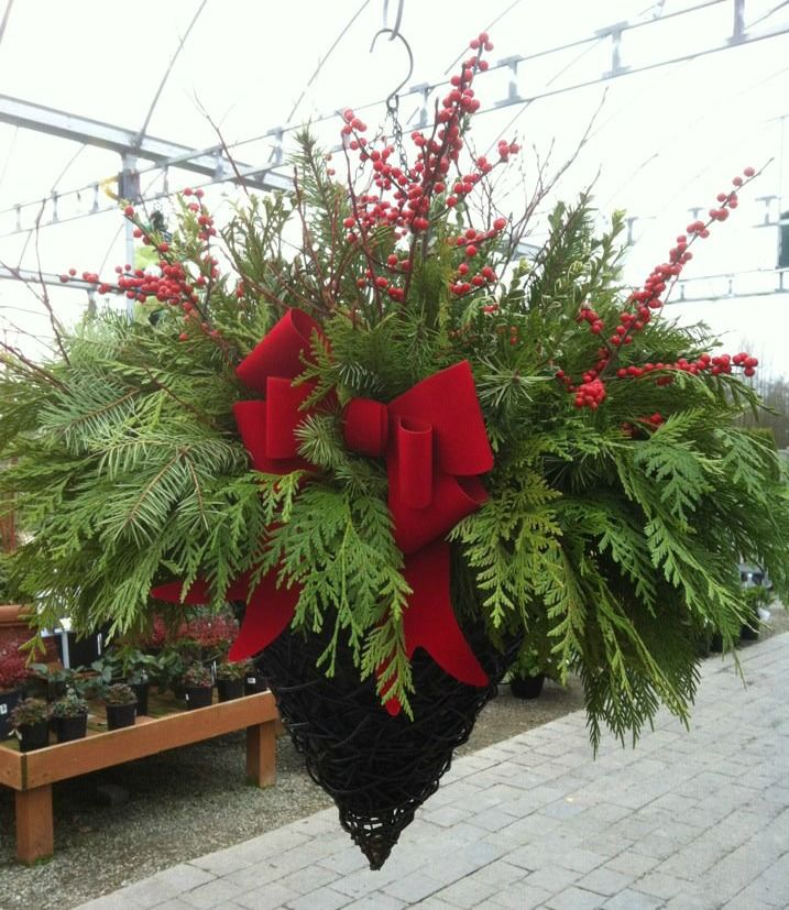 Hanging Flower Baskets For Winter : Best images about winter hanging baskets on