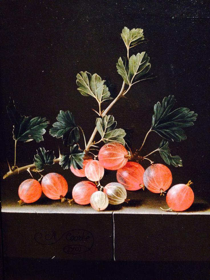 Adriaen Coorte (ca. 1665 – after 1707) was a Dutch Golden Age painter of still lifes