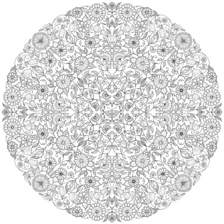 Jardin secret carnet de coloriage chasse au tr sor for Garden 50 designs to help you de stress colouring for mindfulness