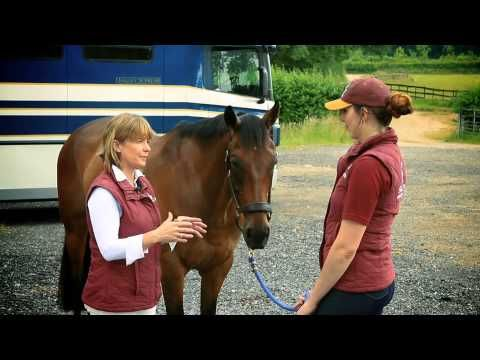Spencer Wilton's tips to improve your ex-racehorse's dressage marks - Horse & Hound