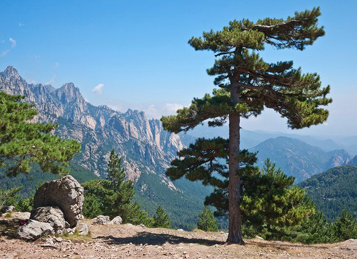 17 Top Rated Tourist Attractions In Corsica Planetware In 2020 Tourist Tourist Attraction Corsica