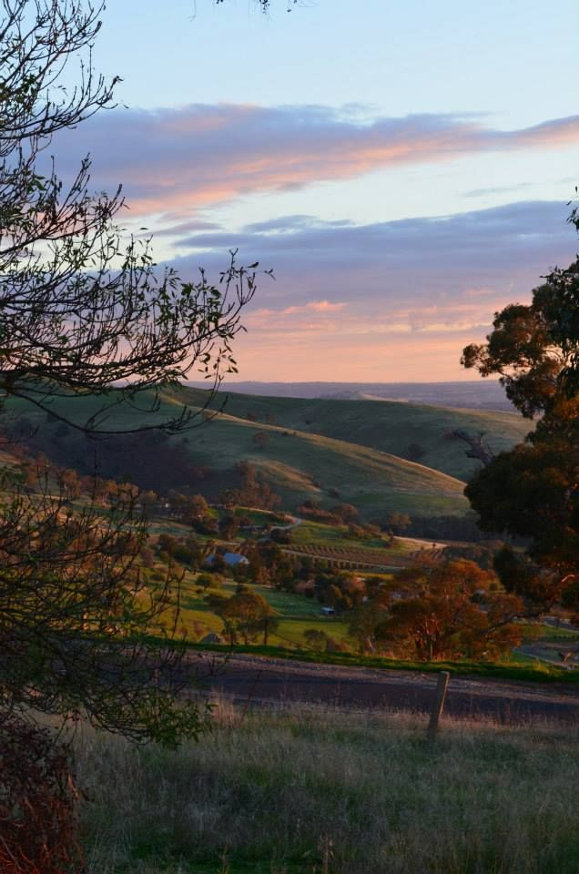 Sunset in the Barossa Valley