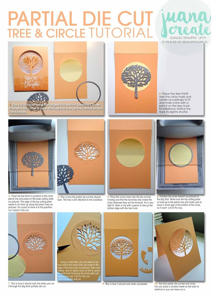 Partial Die Cutting using Beautiful Branches Thinlits  for Thoughtful Branches Card