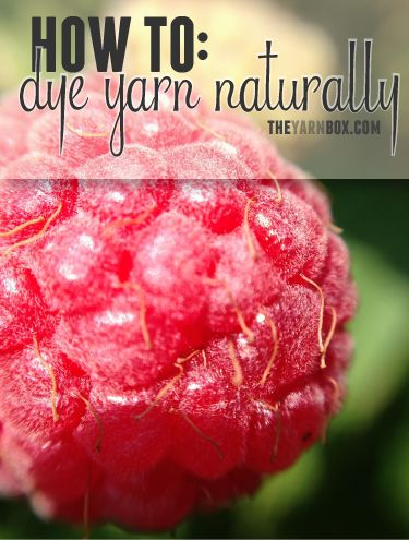 SO COOL!!! Guide for using things from nature to easily dye fabric and yarn!