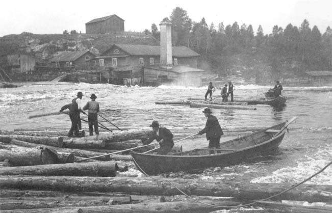 Tukinuittoa Kajaanin Ämmänkoskessa vuonna 1902. Taustalla Ämmän saha. Kuva: H. Renfors. – Museovirasto.