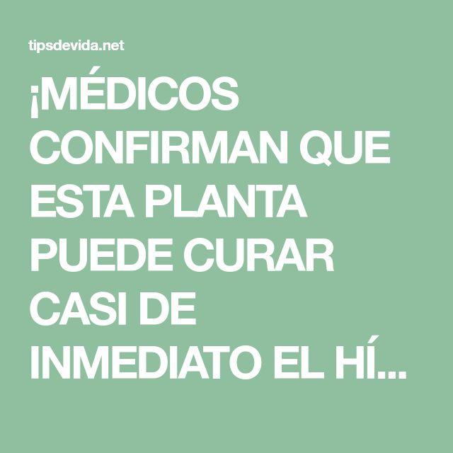 ¡MÉDICOS CONFIRMAN QUE ESTA PLANTA PUEDE CURAR CASI DE INMEDIATO EL HÍGADO, LA VESÍCULA Y DESINFLAMAR LOS INTESTINO –… - tipsdevida.net