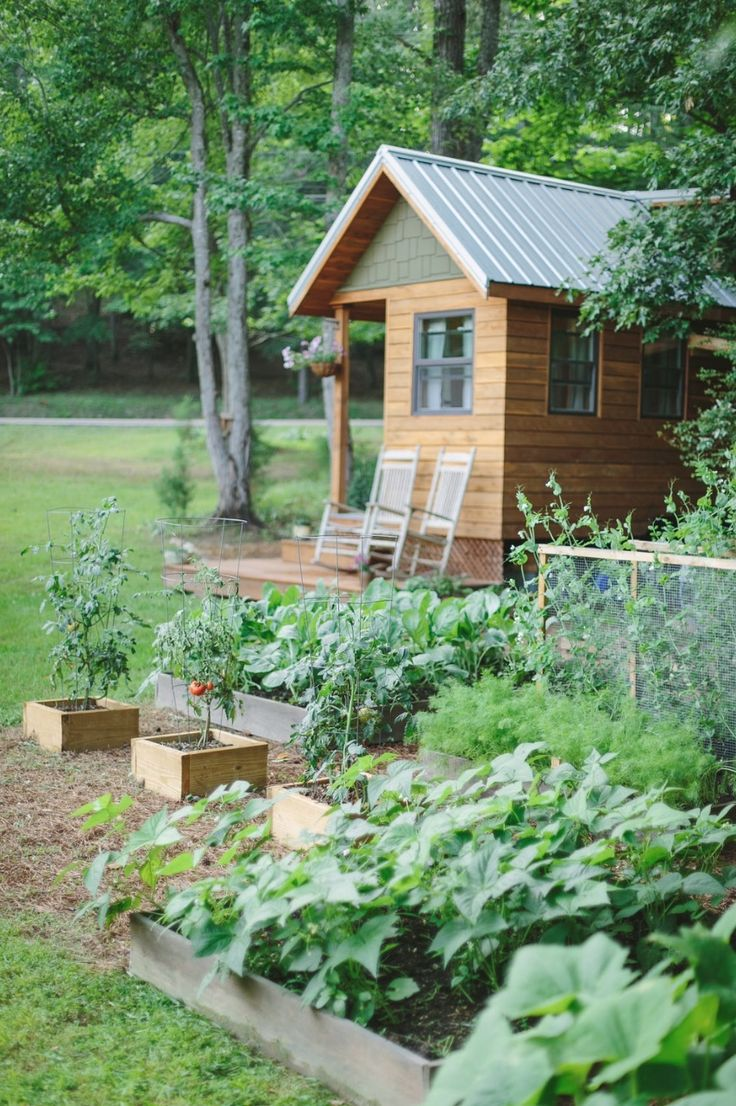 24 best my new shed images on pinterest live small houses and