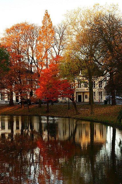 Orange, red, brown & green autumn Trees @ Lepelenburg Utrecht by lambertwn on Flickr #autumn
