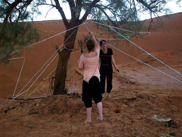 Weaving around a tamarisk tree | Visual Art Research