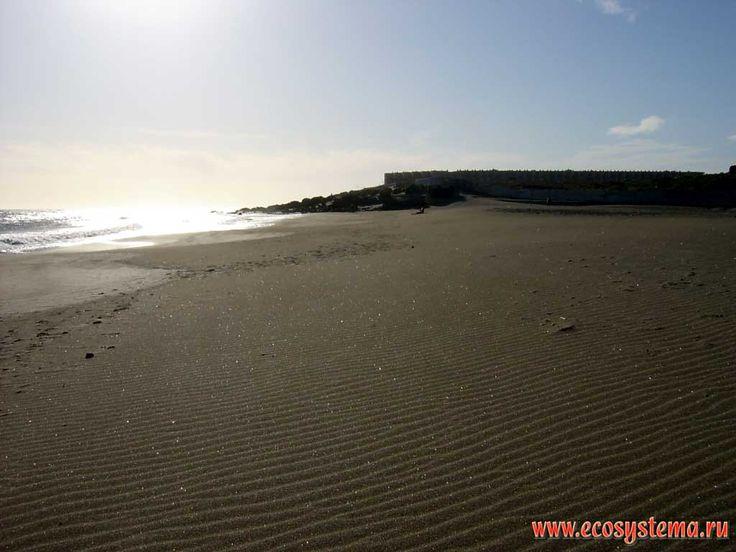 Sandy beach Playa de la Tejita after the strong wind. El Medano outskirts. South of the Tenerife Island, Canary Archipelago