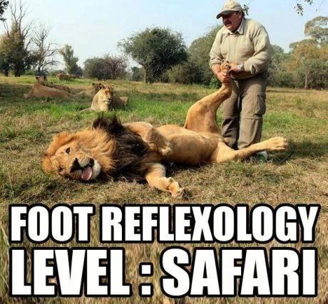 Reflexologie plantaire, niveau safari!