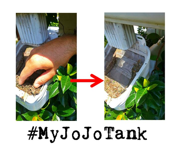 If you have #rainwaterharvesting tank with a LeafEater, don't forget to clear it of any branches and leaves every three to four weeks. That's what we did this weekend!  It's a quick and easy tank maintenance job and it helps keep the water in your tank cleaner. #MyJoJoTank #SaveWater