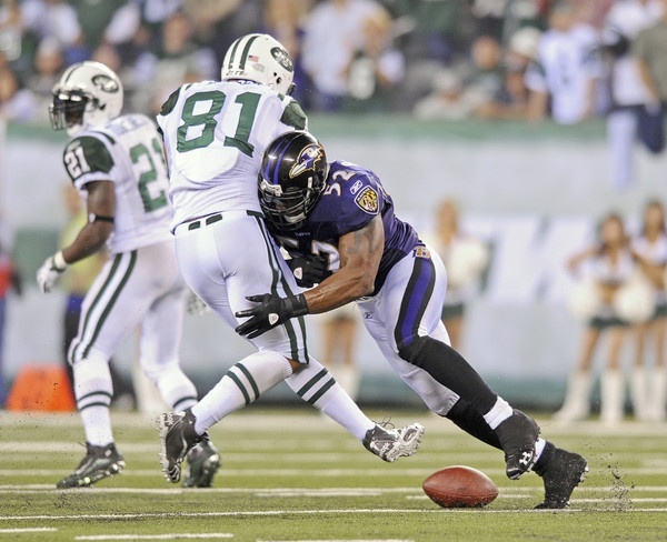 Ray Lewis Football Hits: Ray Lewis Big Hit, Ashlyn Remember I Showed You This One