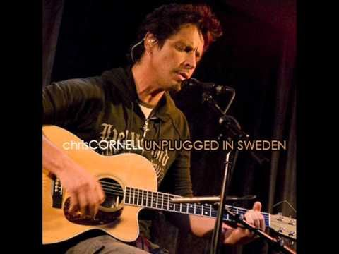 Chris Cornell - Call Me A Dog    Ok, sometimes it's a close race between Eddie Vedder and Chris Cornell for the best voice in music :)     Just take 5 minutes and enjoy this...