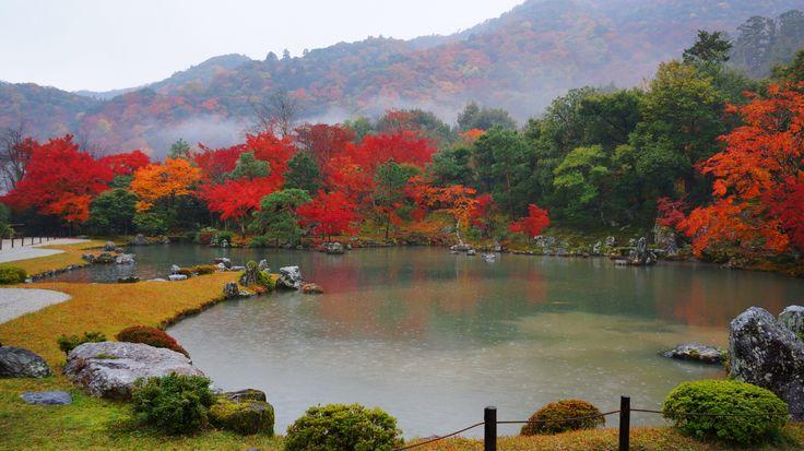 京都 天龍寺 曹源池庭園 紅葉 Japan,Kyoto,Tenryu-ji temple,autumn leaves,colored leaves