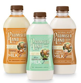 Berry on Dairy: Flavored Milk Opportunities to Compete as a Beverage
