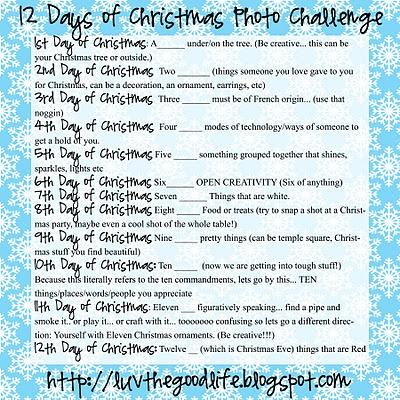12 days of Christmas Photo Challenge!