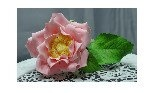 Tea Rose by Cakesupplies on Etsy, $10.00