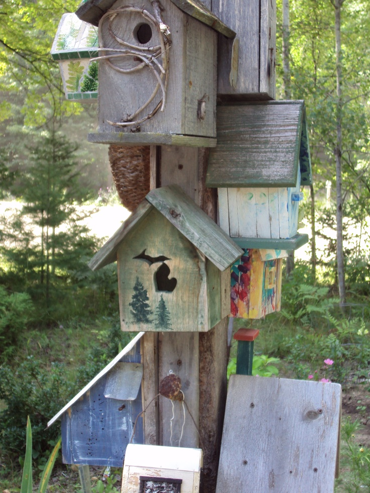 My birdhouse tree by my garden...one of my favorite things
